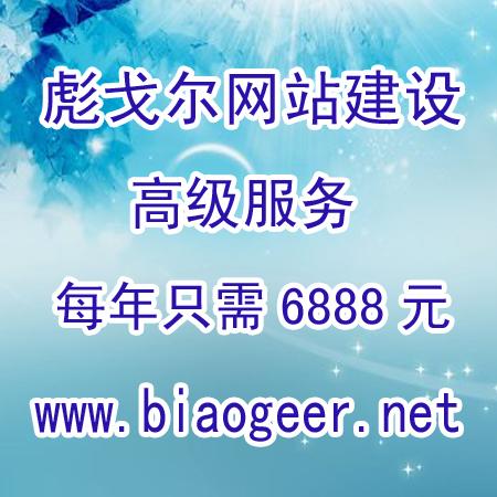 彪戈尔网站建设高级服务